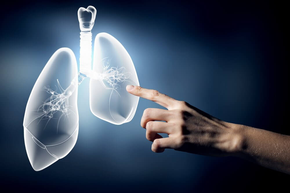 touching lungs on a screen.