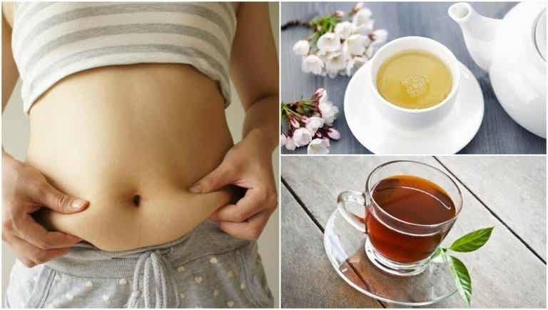 5 Delicious Teas That Will Help You Lose Weight