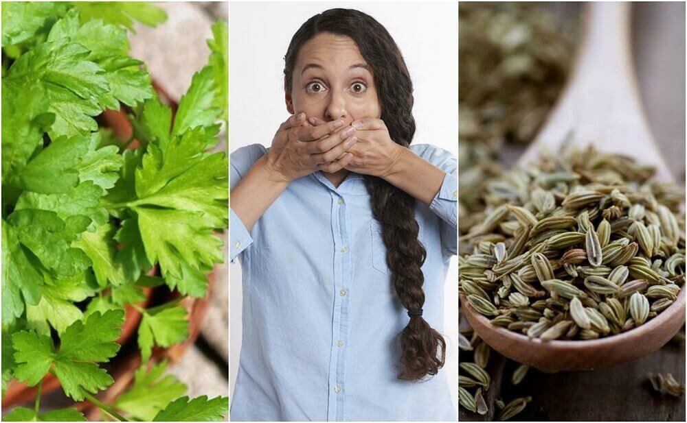 5 Natural Remedies for Gastrointestinal Halitosis
