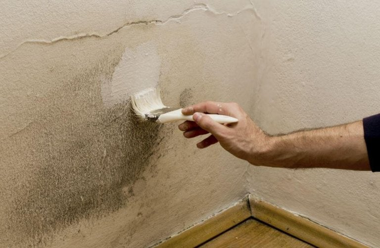 5 Ways To Get Rid of Moisture In Your Home