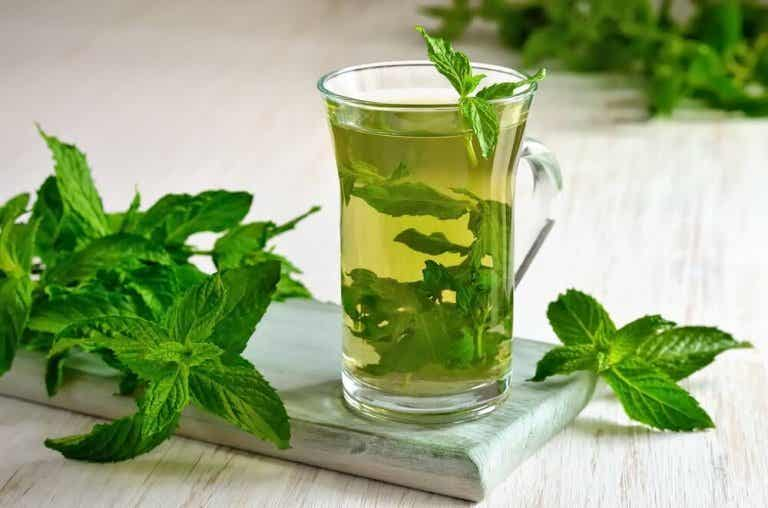 Discover the Multiple Health Properties of Mint Tea