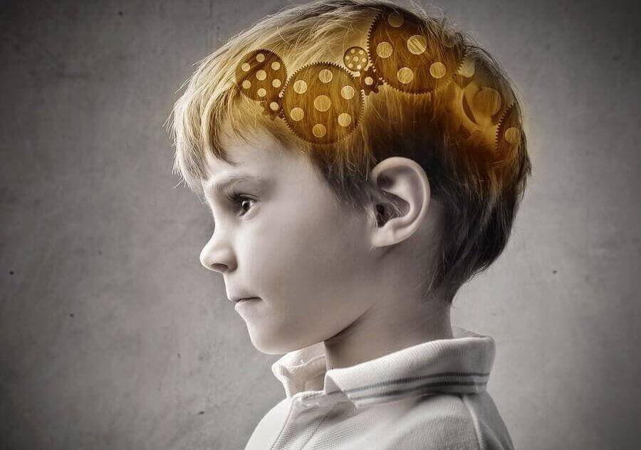 A child's brain suggesting intelligence is inherited from his mother.