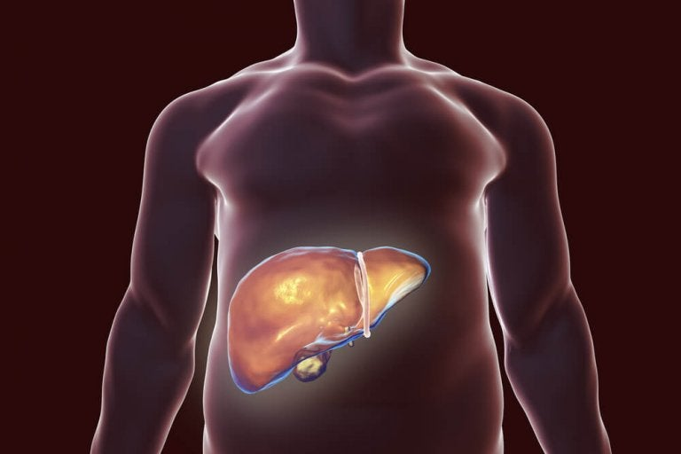 The Best Natural Remedies to Help Detox Your Liver