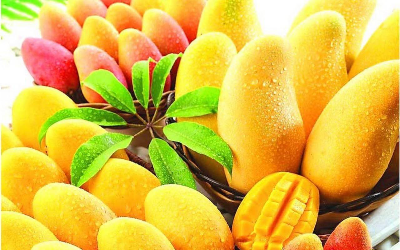 a bunch of mangos, tropical fruit
