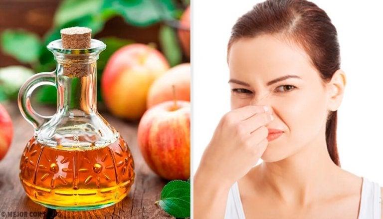 5 Natural Deodorants to Fight Body Odor