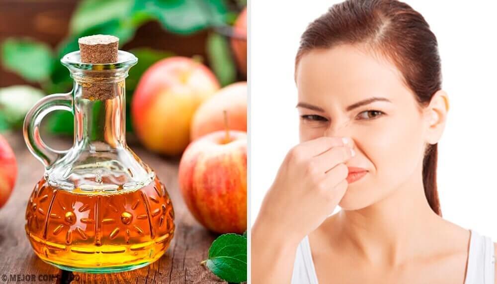5 natürliche Deodorants zur Bekämpfung von Körpergeruch