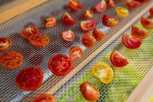 How can you make your own solar food dehydrator?