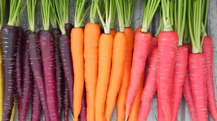 The Amazing Health Benefits of Carrots