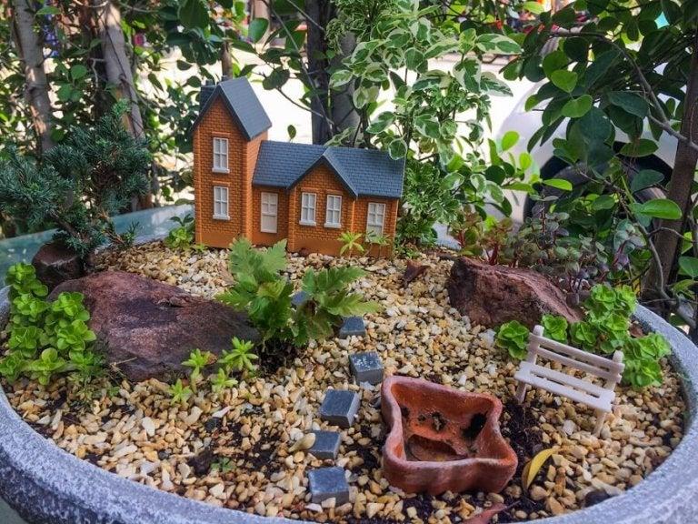 Six Brilliant Ideas for a Mini Garden