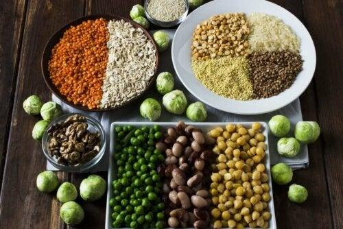 En bakke med alternativer til animalsk protein