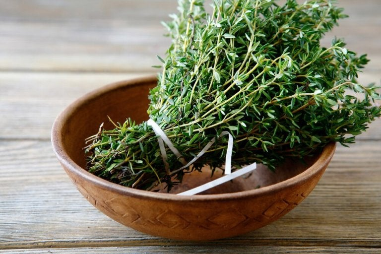 Healthy Benefits and Properties of Thyme