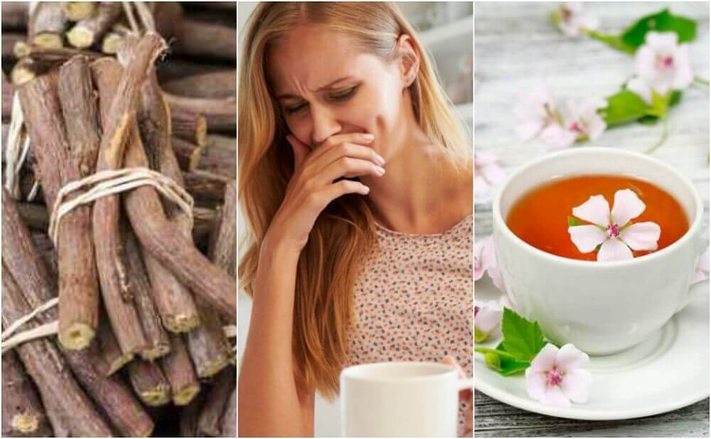 Four Natural Remedies to Treat Esophagitis
