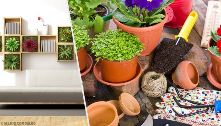 Revitalize Your Home with These 10 Ideas for Decorating with Plants
