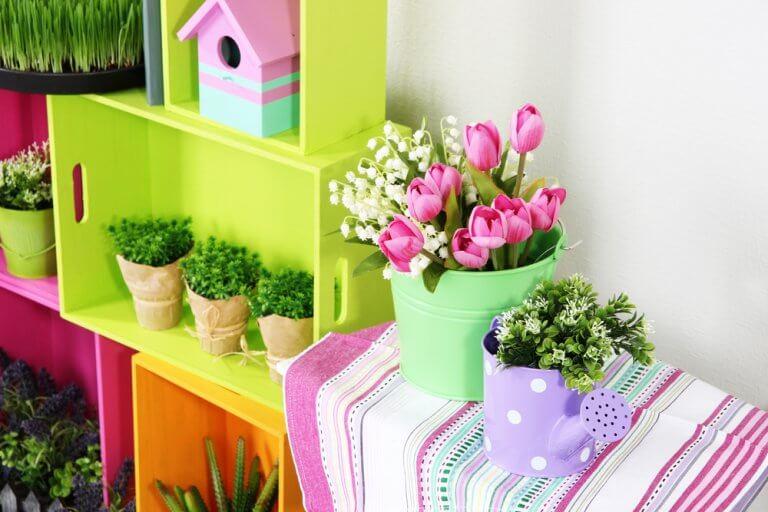 Plants on furniture
