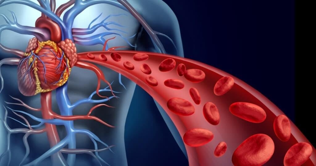 4 Natural Ways to Stimulate Blood Flow in Your Body