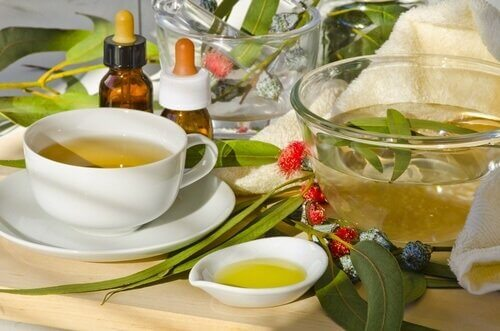detox your lungs with eucalyptus tea