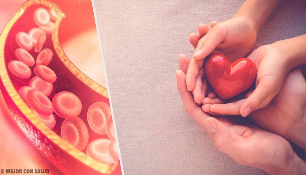 Everything You Should Know About Cholesterol