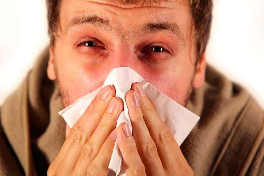 Vaccinations &quot;width =&quot; 864 &quot;height =&quot; 576 &quot;/&gt; </figure> <p> La grippe saisonnière est <strong> une maladie contagieuse causée par un virus </strong> et plus grave La toux, les éternuements ou les sécrétions nasales peuvent transmettre la toux à d'autres personnes. </p> <p> Toute personne peut contracter la grippe saisonnière, en particulier les enfants et les personnes âgées. </p> <p> Parmi les symptômes de la grippe saisonnière: </p> <ul> <li> Fièvre </li> <li> Toux </li> <li> Maux de tête </li> <li> Frissons </li> <li> Maux de gorge </li> <li> Épuisement </li> <li> Douleurs musculaires </li> </ul> <p> Bien que la grippe dure habituellement quelques jours <strong>elle peut entraîner des complications si elle n&#39;est pas traitée correctement. </strong> Dans ce cas, il peut finir par causer: </p> <ul> <li> Pneumonie </li> <li> Crises d&#39;épilepsie </li> <li> Fièvre élevée </li> <li> Maux d&#39;estomac </li> <li> Diarrhée </li> <li> otites </li> </ul> <p> Le meilleur moyen de prévenir la grippe saisonnière et ses complications est de recevoir un de ces vaccins chaque année. </p> <p> </p> <blockquote> <p> <em> Vous aimeriez peut-être: </em> <em> <a href=