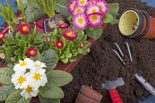 Garden accessories for a smaller garden