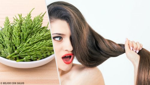 horsetail for hair
