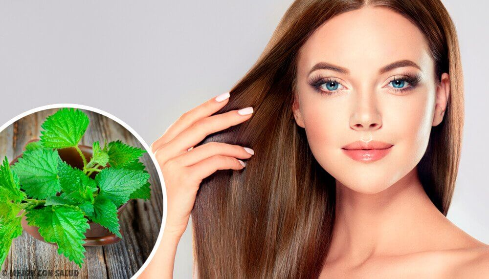 The Benefits of Nettle for Your Hair