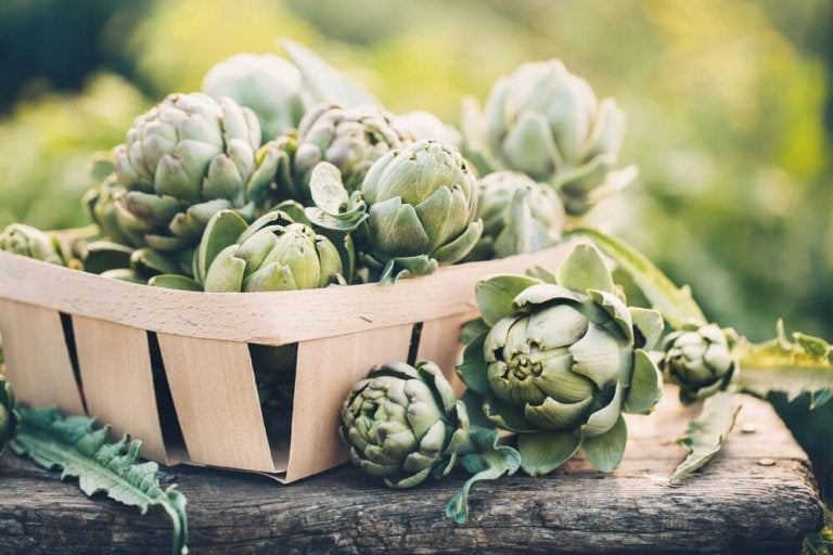 Lose Weight Effectively with the Artichoke Diet
