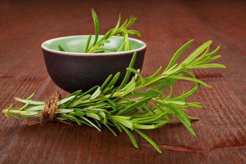 Rosemary Decoction