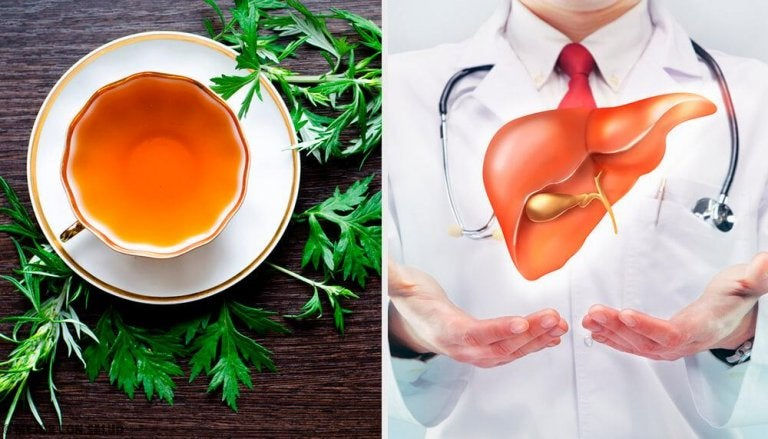 9 Properties of Wormwood for Liver Health