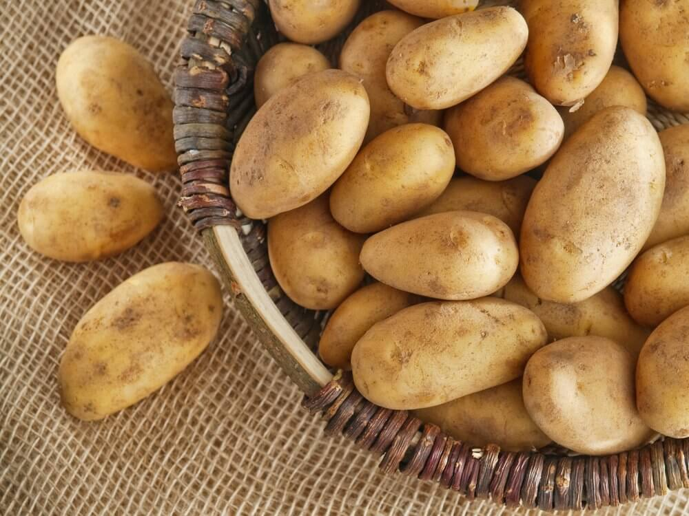 A basket of raw potatoes