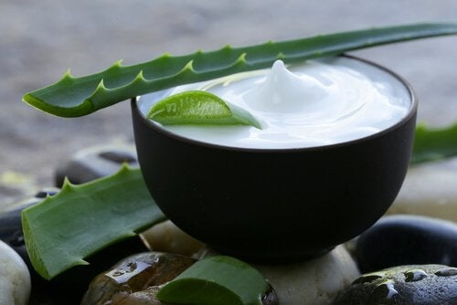 Aloe vera in homemade hand creams