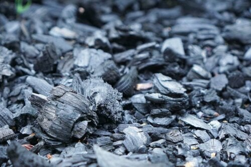 Some natural charcoal that can help get rid of bad odors.