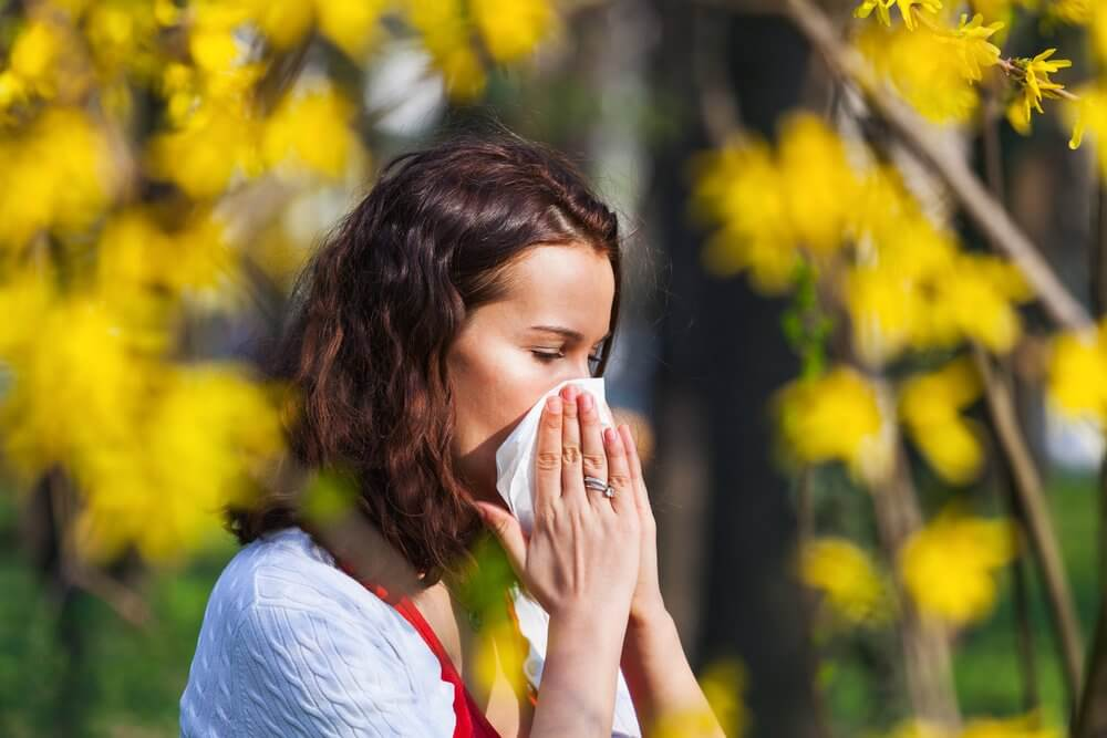 Seasonal Allergies: Causes, Symptoms, and Treatment