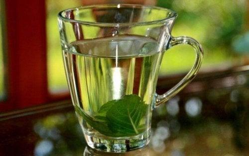 te med urter