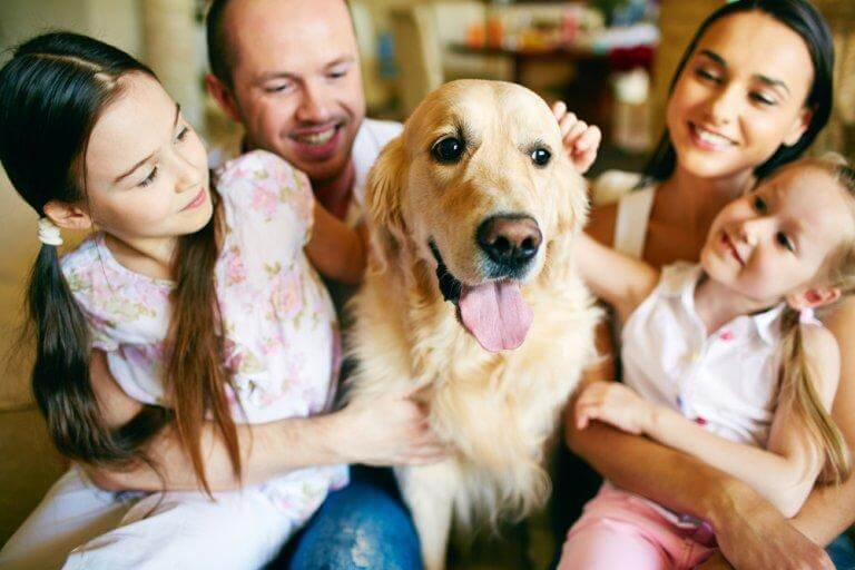 The Benefits of Having a Pet in the Family