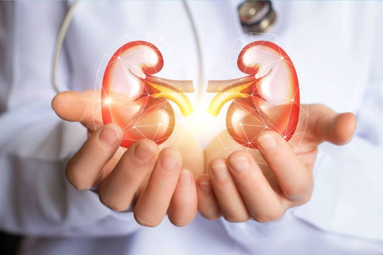 Amazing Detox Diet for Cleansing Your Kidneys