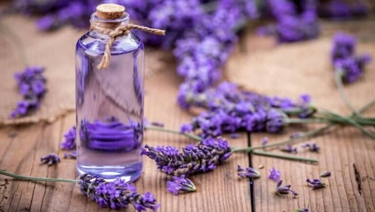 Lavender oil.