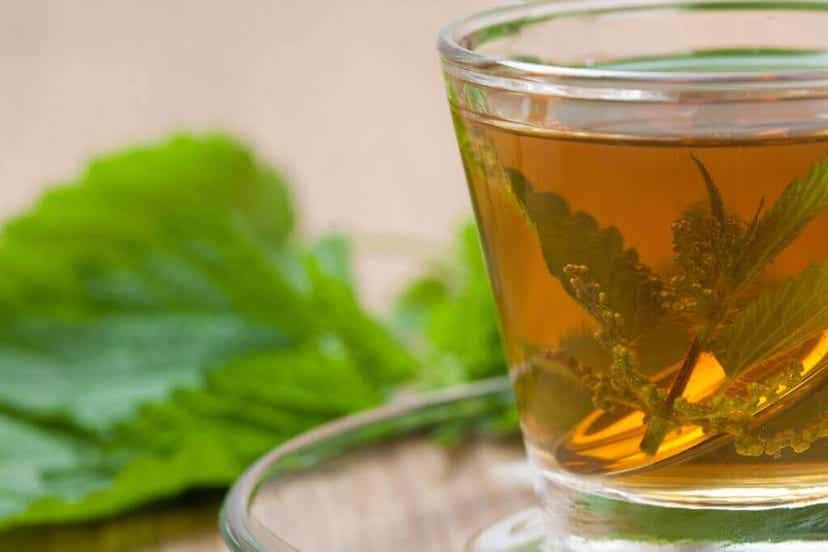 A cup of nettle tea.
