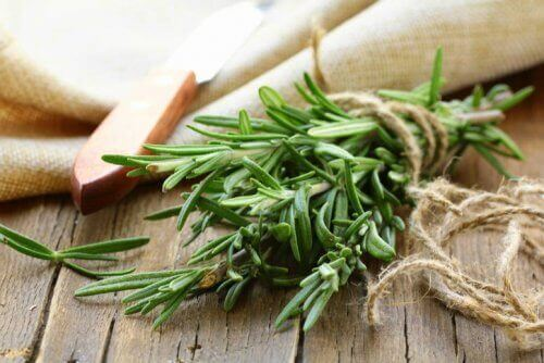 A bunch of fresh rosemary sprigs.