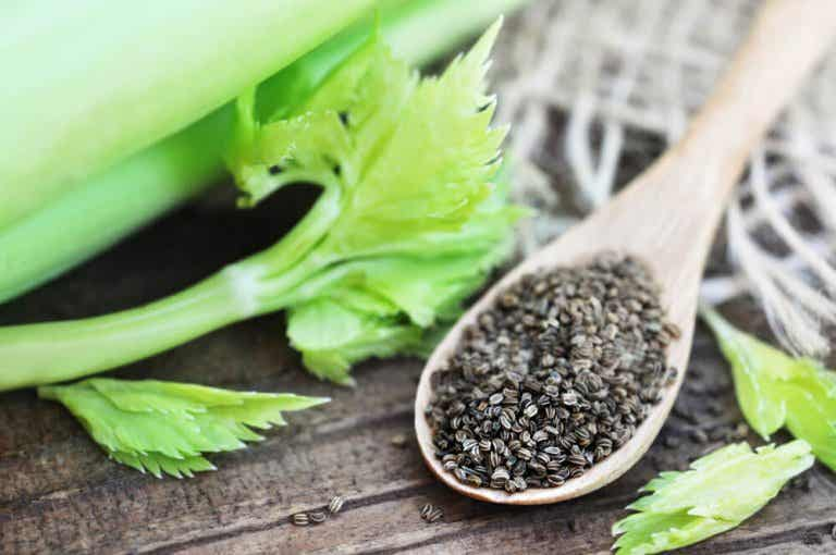 Celery Seeds: A Natural Tea for High Blood Pressure
