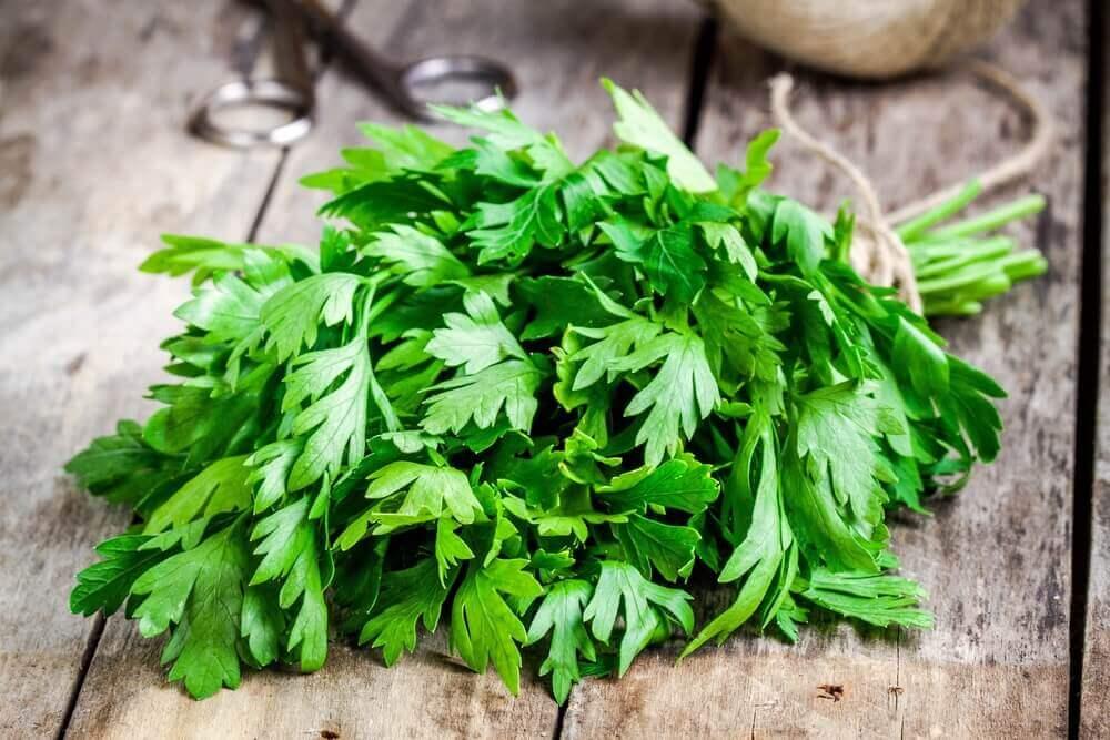 5 Herbal Lotions to Treat Dandruff Naturally