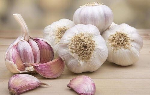 Some bulbs and cloves of garlic