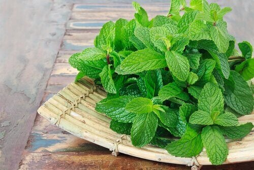 Some peppermint on a wooden tray