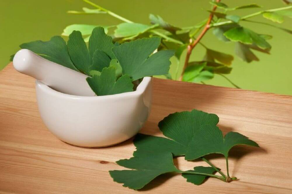 Homemade ginkgo biloba remedies.