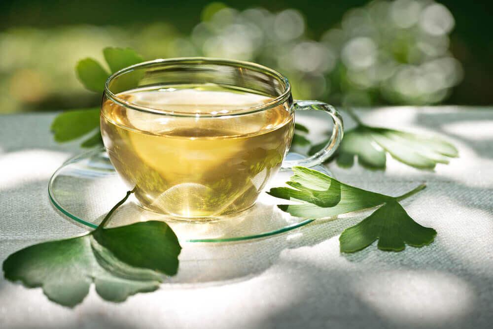 Ginkgo tea.
