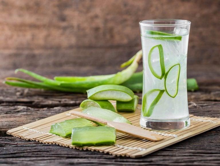 Aloe Vera for Slow Digestion