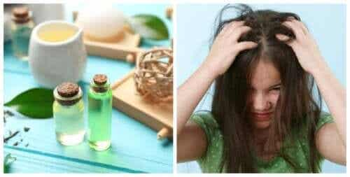 Four Vinegar-based Remedies to Naturally Combat Head Lice