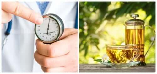 Five Herbal Remedies for the Treatment of Hypertension