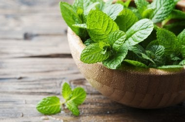 Three Remedies for Bad Breath Using Mint