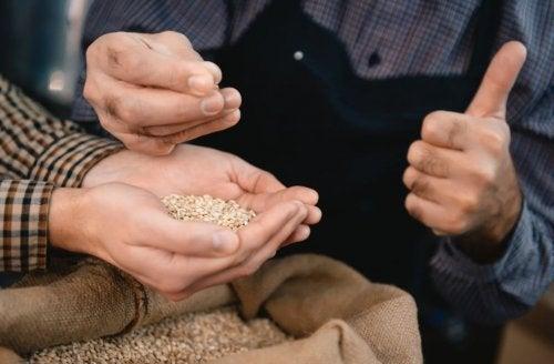 forskellige typer fuldkorn, der tages op af stofsæk