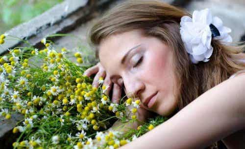 Eight Aromatic Oils to Help You Sleep Better